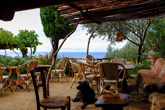 16_50_50_499_restaurant_ACasarella_corse.jpg